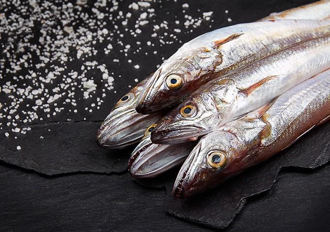 El hierro en el pescado