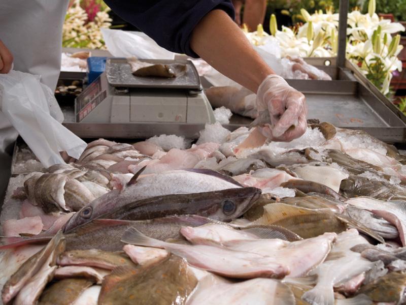 Pescado Charo
