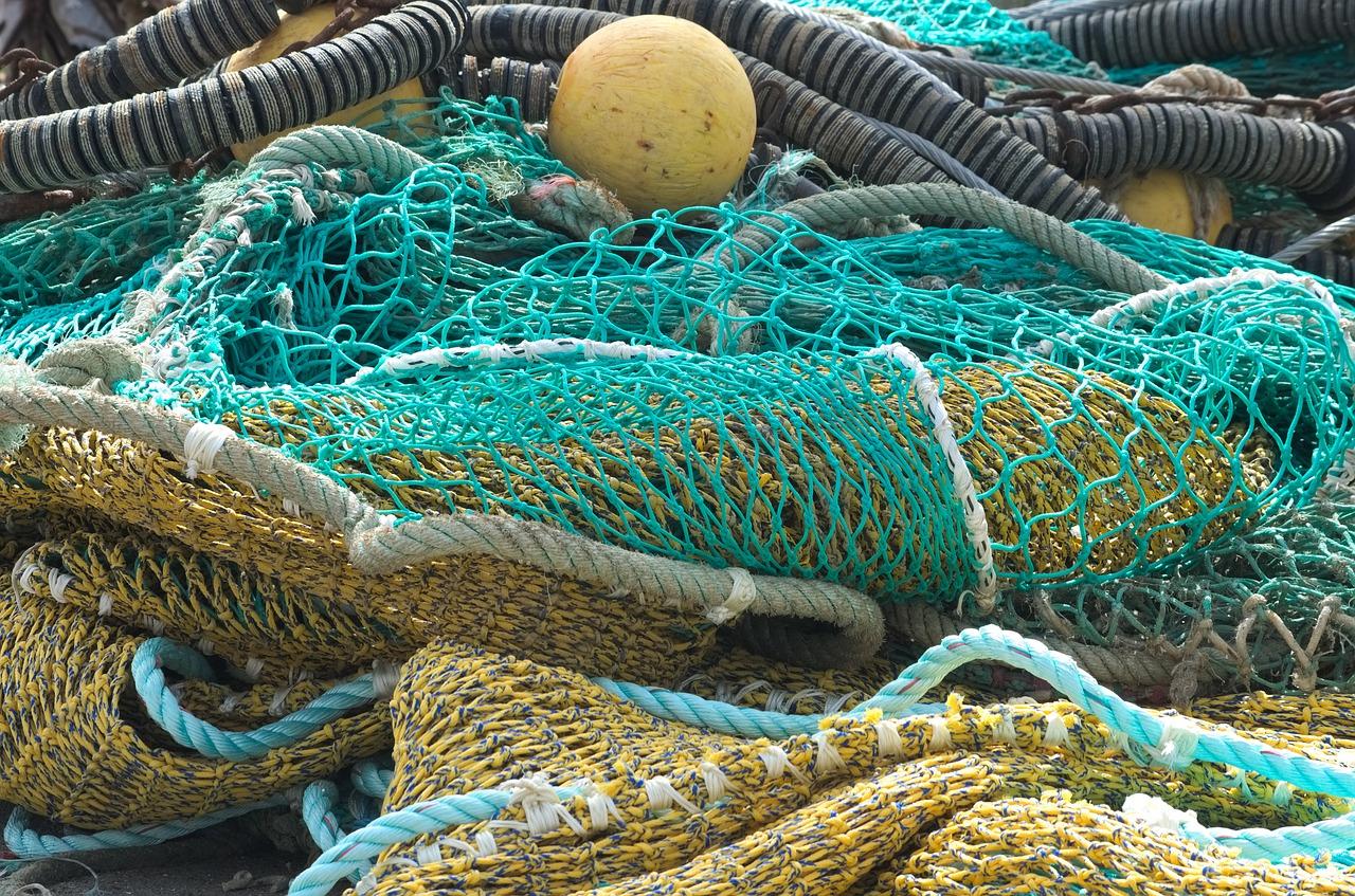 Por qué consumir pescado de temporada