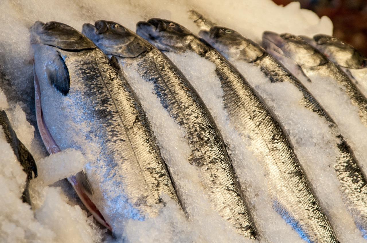 Trucos para conservar el pescado fresco más tiempo